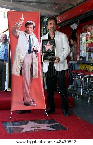 LOS ANGELES - JUL 25:  Joe Mantegna at the Peter Falk Posthumous Walk of Fame Star ceremony at the Hollywood Walk of Fame on July 25, 2013 in Los Angeles, CA