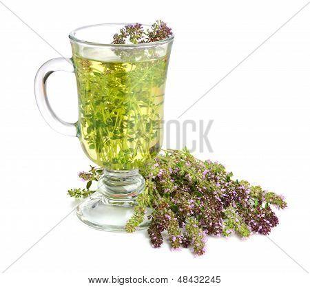 Чай чабрец с мятой польза