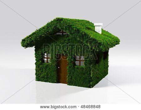 A House Made Of Grass