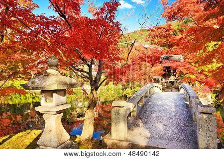 Fall foliage at Eikando Temple in Kyoto, Japan.
