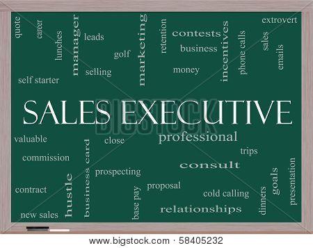 Sales Executive Word Cloud Concept On A Blackboard