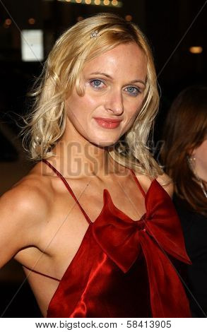 HOLLYWOOD - DECEMBER 06: Dominika Wolski at the premiere of
