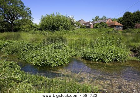 Stream And Farmhouse
