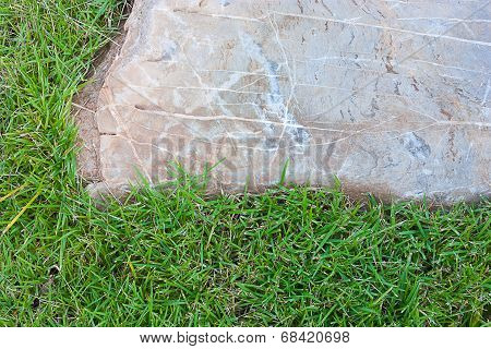 White stone on green grass in the garden. poster