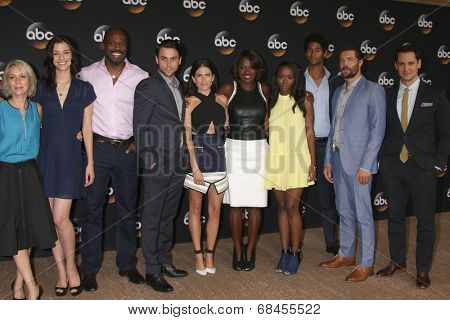 LOS ANGELES - JUL 15:  How to Get Away WIth Murder Cast  at the ABC July 2014 TCA at Beverly Hilton on July 15, 2014 in Beverly Hills, CA