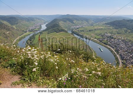 River Moselle Near Zell And Punderich In Germany