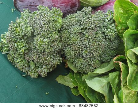 broccoli up close on teal