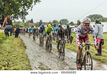 The Peloton On A Cobbled Road- Tour De France 2014