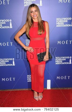 LOS ANGELES - AUG 14:  Sofia Vergara arrives to the HFPA Annual Installation Dinner 2014 on August 14, 2014 in Beverly Hills, CA