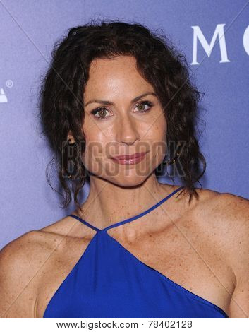 LOS ANGELES - AUG 14:  Minnie Driver arrives to the HFPA Annual Installation Dinner 2014 on August 14, 2014 in Beverly Hills, CA