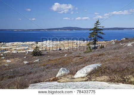 Rocky Nova Scotia shoreline near Peggy's Cove.