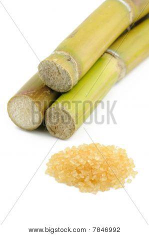 Sugar Cane And Brown Sugar