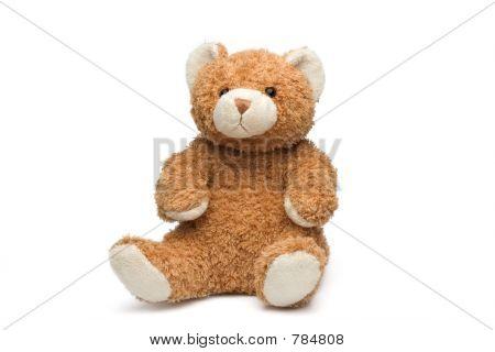 Teddy Bear on white background poster