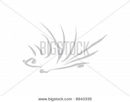 Grey Prickly Hedgehog