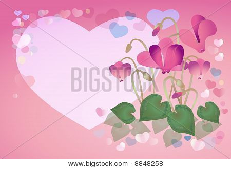 Spring Background With Cyclamens