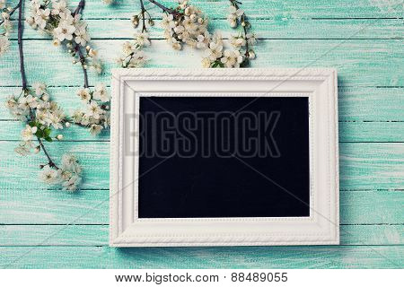Flowering Tree Branches And Blackboard