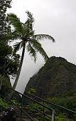 Needle Iao Valley State Park Wailuku Maui Hawaii poster