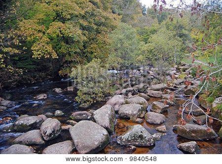 Autumnal View of upper reaches of river Dart, Devon