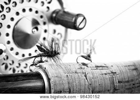 Black And White Close Up Of Fly Fishing Rod And Reel On White Background