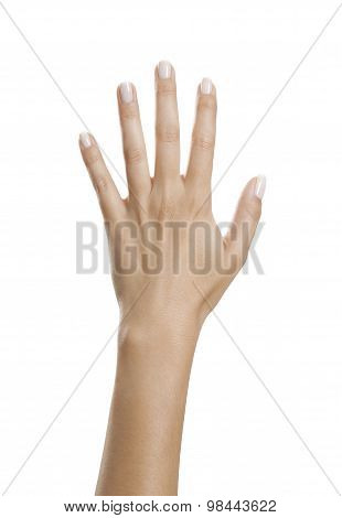 Hand With Beautiful Nails