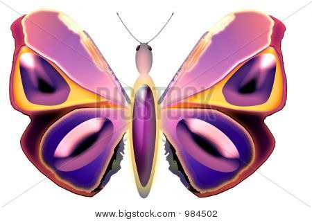 an illustration of a butterfly in a variety of shades and colours. poster