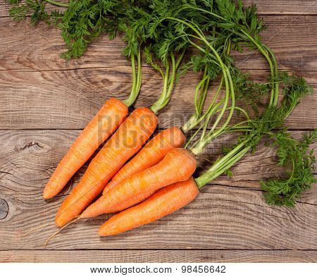 Carrot On The Old Board. Rural Concept