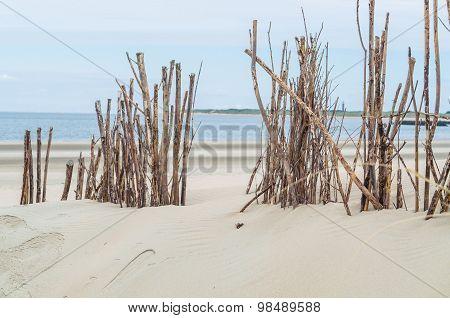 Beach And Sand Dunes