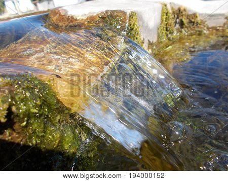 Beautiful water flow with sunshine and alga