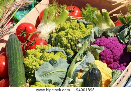 Crate of varied vegetables in a market