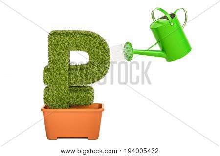 Watering can water ruble sterling symbol. Money plant concept 3D rendering