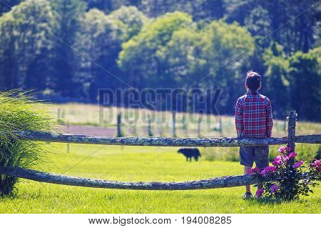 boy and dog outdoors. kid standing by the wooden fence and waiting for the dog. Copy space for your text