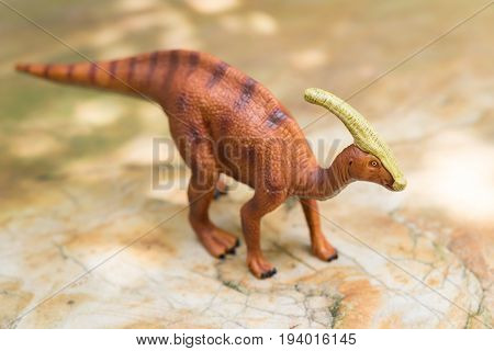 a Parasaurolophus toy on rock in day time