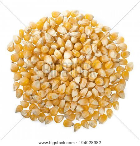 Heap of Dried Corn Isolated