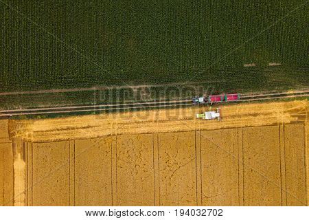Aerial view of combine harvester unloading harvested wheat into agricultural tractors trailer wagon