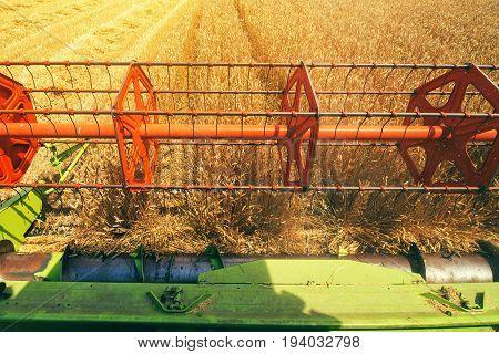 Combine harvester revolving reel harvesting wheat field from farmers pov