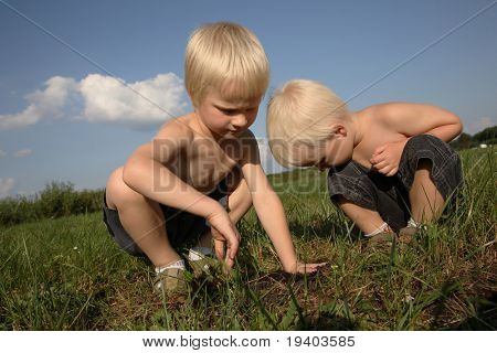 Rual landscape and two boys