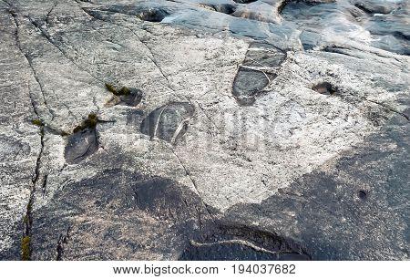Onega petroglyphs footprints closeup - prehistoric rock engravings on the granite shore (Republic of Karelia Russia). Natural stone texture background.