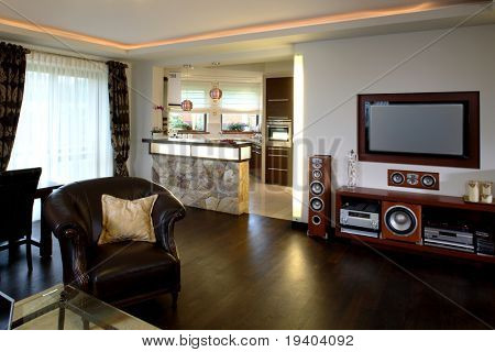 Interior of classically furnished living room
