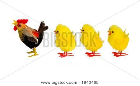 Chicken And Three Chicklings