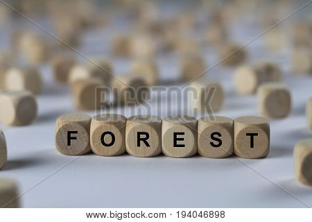 Forest - Cube With Letters, Sign With Wooden Cubes