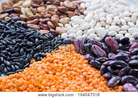 Orange Lentils, White, Purple, Brown Kidney Haricot Beans Close-up