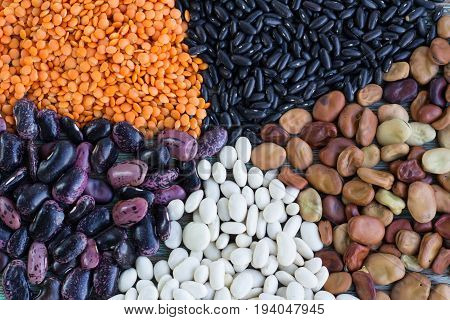 Yellow Lentils, White, Purple, Brown Kidney Beans Batches Close-up