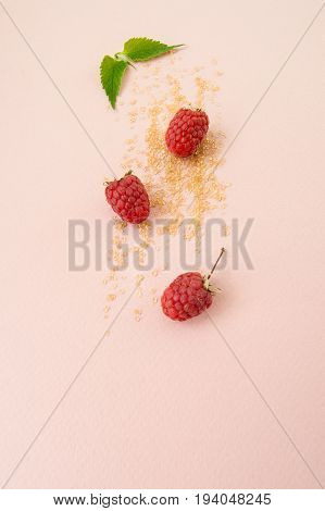 Ripe Raspberries, Sugar And Fresh Mint Leaves On A Pastel Pink Background..