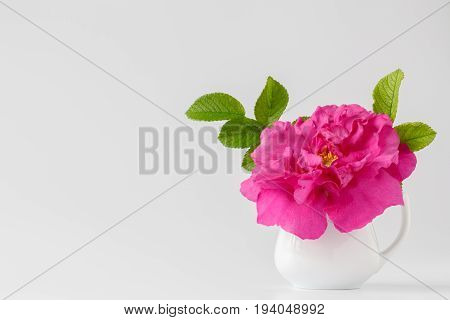 Bouquet Of White Wild Roses In A Vase.