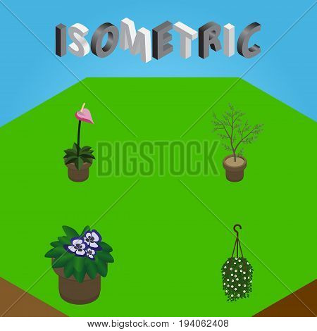 Isometric Flower Set Of Flowerpot, Grower, Blossom And Other Vector Objects. Also Includes Blossom, Houseplant, Hanging Elements.