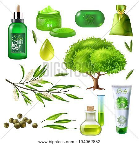 Products of tea tree set including parts of plant, oil droplet, soap, creams, sachet isolated vector illustration
