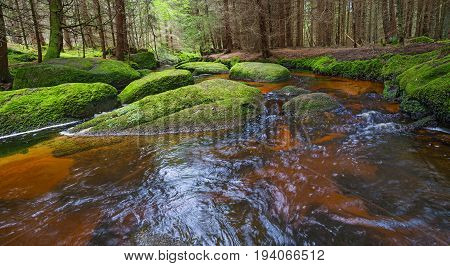 brook in forest in Sumava Czech republic Europe