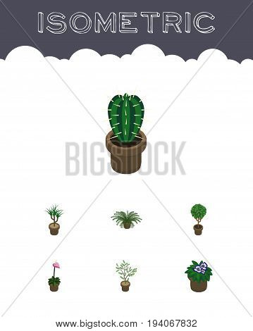 Isometric Plant Set Of Tree, Houseplant, Flowerpot And Other Vector Objects. Also Includes Flowerpot, Plant, Cactus Elements.
