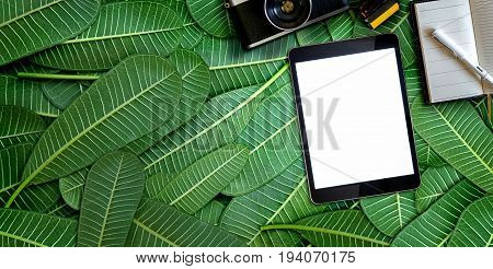 Tablet and photographer stuff on of green leaves. Flat lay. Blank screen tablet for graphic display montage.
