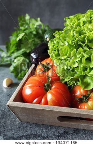Vegetable background: fresh lettuce tomatoes aubergine and zucchini on tray. Focus selective